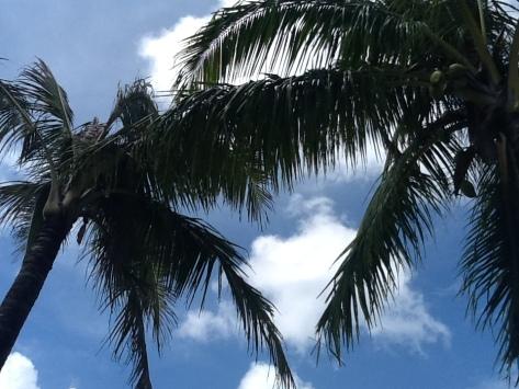 """the beach"" - Guam"