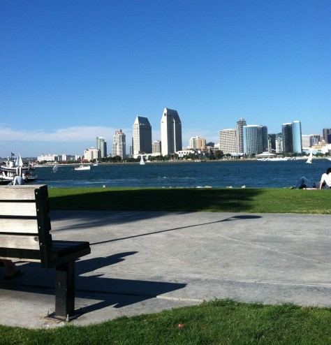 Beautiful San Diego from Coronado