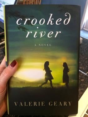 My Niece's 1st new novel!