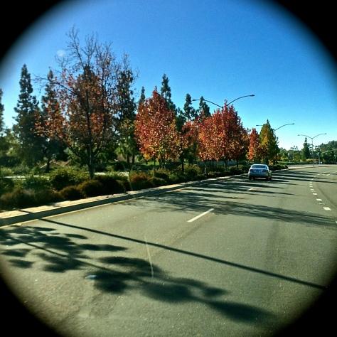 San Diego Fall